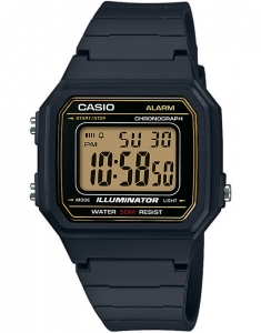 Ceas de mana Casio Collection W-217H-9AVEF