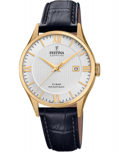 Festina Swiss Made F20010/2